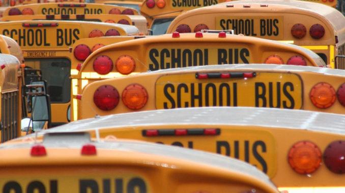 Zoomaufnahme einer Reihe von amerikanischen Schulbussen.