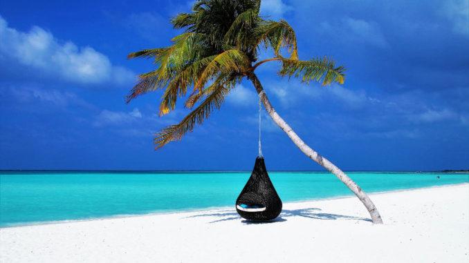 malediven palma strand sand der küste insel